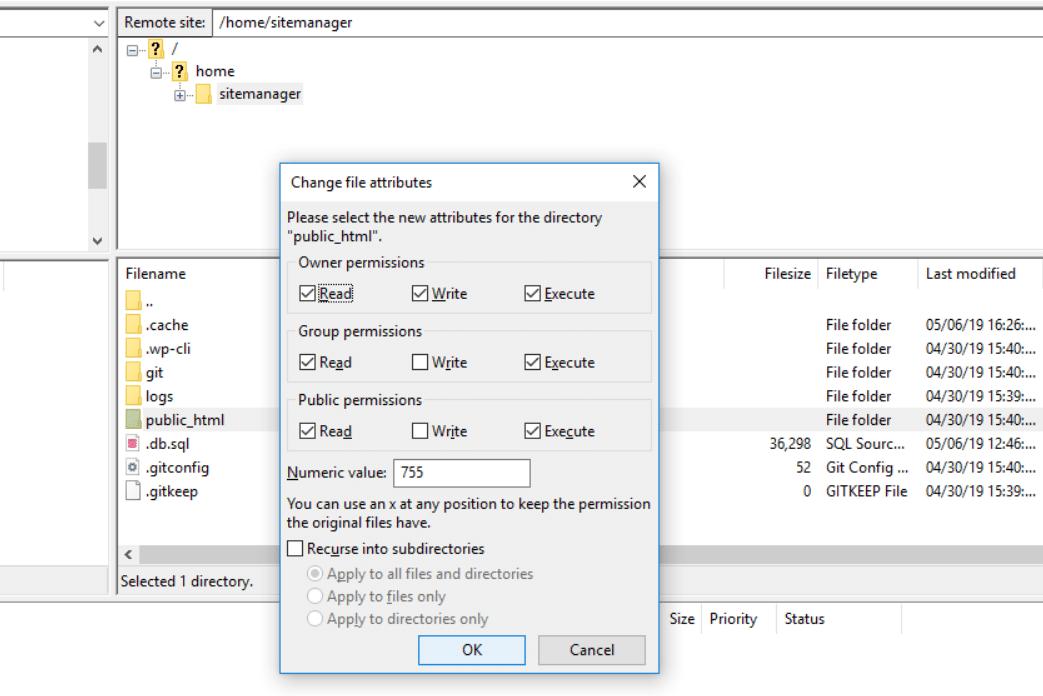 public_html File Permission