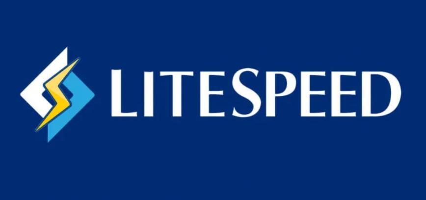 What Is LiteSpeed Web Server?