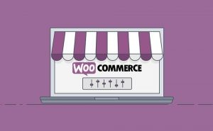 8 Best WooCommerce Elementor Themes for 2021 (Both Free and Paid)